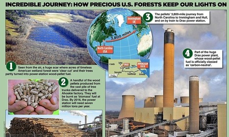 Woodland is shipped 3,800 miles and burned in Drax power station | The Eutopian Nightmare | Scoop.it
