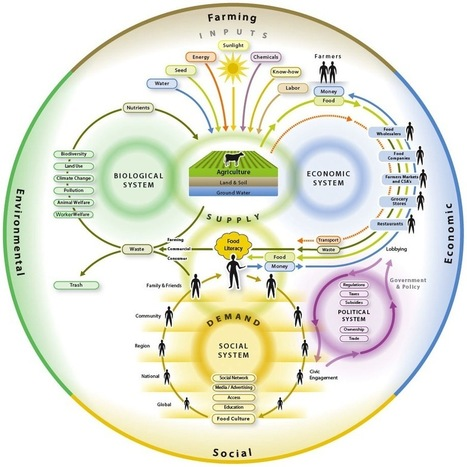 Mapping Our Food System – Circles Within Circles « GoodFood World | Food System Innovation | Scoop.it
