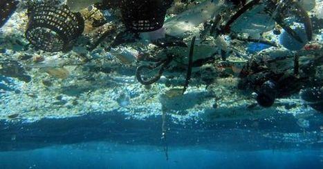 La surface des océans contaminée à 88 % par du plastique   Le recours aux forêts   Scoop.it