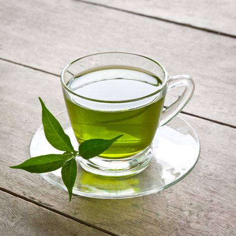 Green Tea for Weight Loss – No Side Effects | Health | Scoop.it