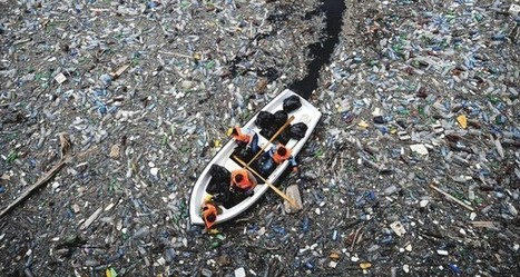 If the #Ocean were a company, it would be heading for #bankruptcy ... | Rescue our Ocean's & it's species from Man's Pollution! | Scoop.it