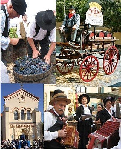 Vendanges d'antan en Vallée du Rhône | Vendanges en Vallée du Rhône-Harvest in Rhône Valley | Scoop.it