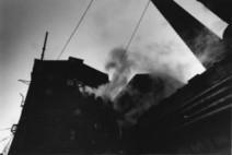 Al Mast di Bologna la mostra fotografica del regista David Lynch | Week NewsLife | Scoop.it