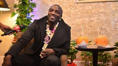 Akon to bring solar power to 600 million Africans living without electricit | Peer2Politics | Scoop.it