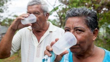 Egyptian method filters seawater in minutes | 21st Century Craft & Pride | Scoop.it