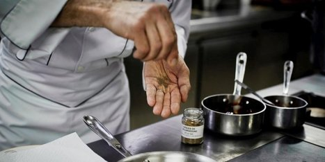 Pays basque : le Basque Culinary Center lance un prix doté de 100 000 euros | Veille Gastronomie & Oenologie | Scoop.it
