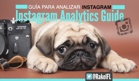 INSTAGRAM ANALYTICS GUIDE: Guía completa para Analizar Instagram | Seo, Social Media Marketing | Scoop.it