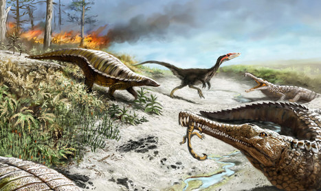 Only carnivores could handle Late Triassic tropics | Geology | Scoop.it