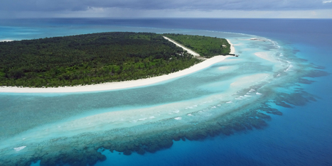 La Grande barrière de corail plus menacée qu'on ne le pensait   Zones humides - Ramsar - Océans   Scoop.it