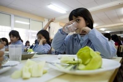 Bruselas recuerda a España que el comedor escolar puede estar exento de IVA | Crisis | Scoop.it