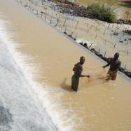 Trois nouveaux Sites Ramsar au Burkina Faso   De Natura Rerum   Scoop.it