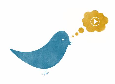 Video Sharing is Dominating Social Media | Online Video & WebTv Business | Scoop.it
