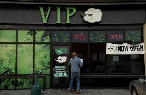 Two months after Colorado raids, marijuana operators back in business - Denver Post | The legalization of marijuana | Scoop.it