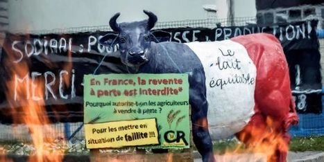 L'étiquetage des produits laitiers fait frémir les industriels | Alimentation Santé Environnement | Scoop.it