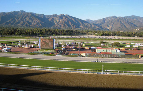 Declining equine fatality rates in California tell a complicated story | Thoroughbred Racing Commentary | Horse Racing News | Scoop.it