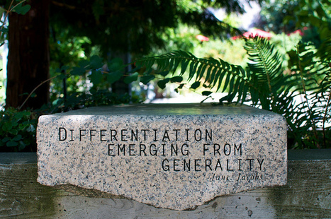 To Differentiate Or Not To Differentiate Really Isn't The Question | Edtech PK-12 | Scoop.it