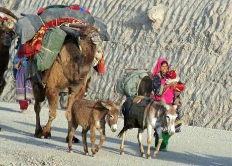 Afghan nomads are forced to permanently settling down - DigitalJournal.com | Rangelands observatory | Scoop.it