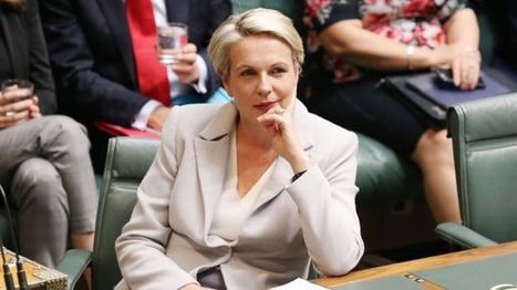 Labor prepared to push Malcolm Turnbull to breaking point on gay marriage: Plibersek | Gay News | Scoop.it