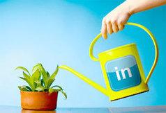 Le Guide complet de l'Utilisateur LinkedIn | CM Facebook Twitter Utile | Scoop.it