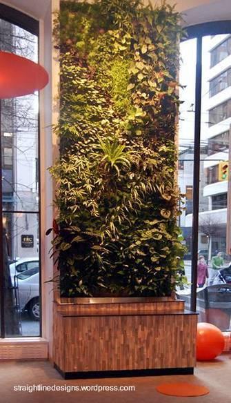 Arquitectura de Casas: Jardines verticales de interiores.   Cultivos Hidropónicos   Scoop.it