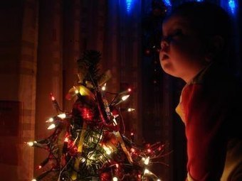 The Most Eco-Friendly Christmas Tree Choices | Fun Facts: Pre Lit Artificial Christmas Trees Walmart Has | Scoop.it