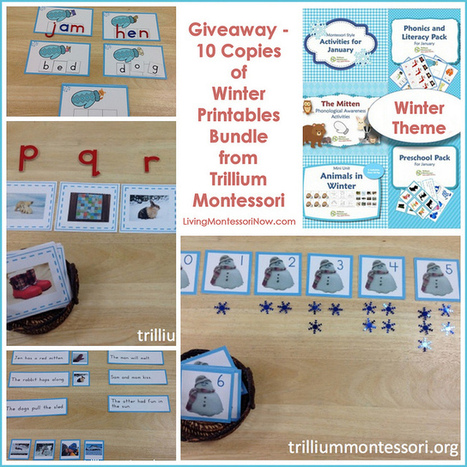 Giveaway – 10 Copies of Winter Printables Bundle from Trillium Montessori | Montessori Inspired | Scoop.it