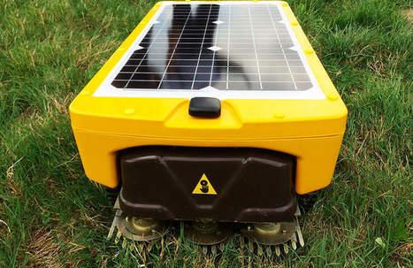 Vitirover, le robot solaire qui veut mettre fin à l'utilisation des désherbants chimiques | ALPC Numérique | Scoop.it