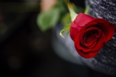 Washington florist rejects settlement offer after court rules she can't refuse service to gay weddings   Law and Religion   Scoop.it