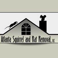 Atlanta Squirrel & Rat Removal   Animal Removal Company in Atlanta   Scoop.it