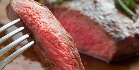 Why I Eat Red Meat - Stating a case for Grass Fed Beef | ELM - Diet Health and Nutrition | Scoop.it