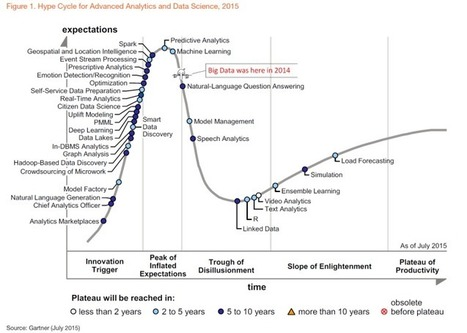 Big Data Falls Off the Hype Cycle | Web 2.0 et société | Scoop.it