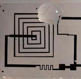 Elettronica transiente ed elettronica biodegradabile - Rinnovabili.it | LucaScoop.it | Scoop.it