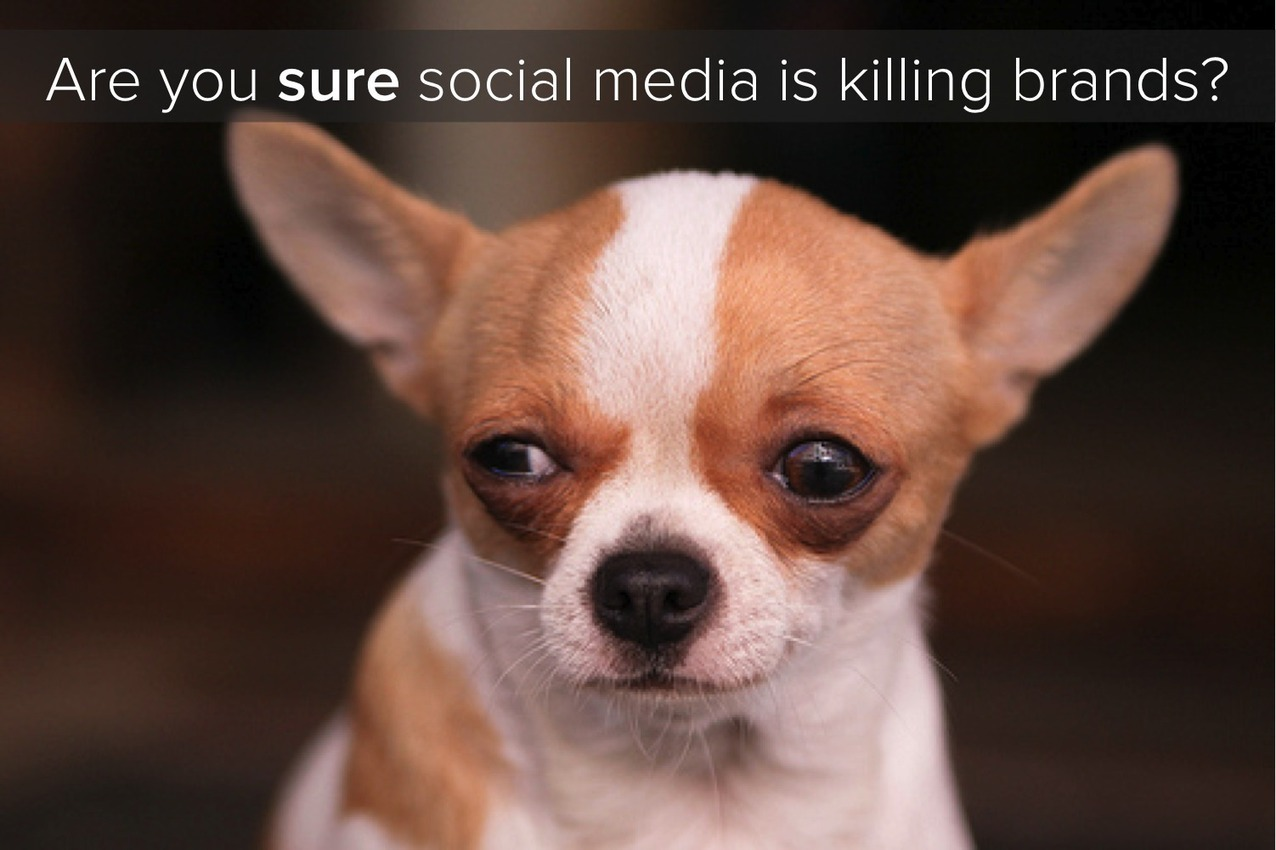 Is Social Media Killing Brands? | Social Media ...