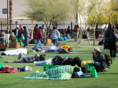 Homeless Seek Shelter, Crops Suffer Amid Southwest Cold Snap  | NPR | CALS in the News | Scoop.it