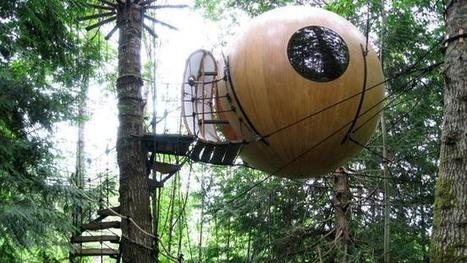 The world's 10 weirdest hotels | RESORTS & HOTEL OPERATIONS | Scoop.it
