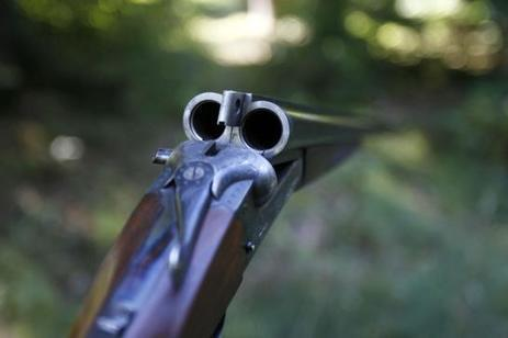 Sarthe : un enfant de 12 ans tué par un fusil de chasse manipulé par son cousin | Chasse dans le Nord... et ailleurs | Scoop.it