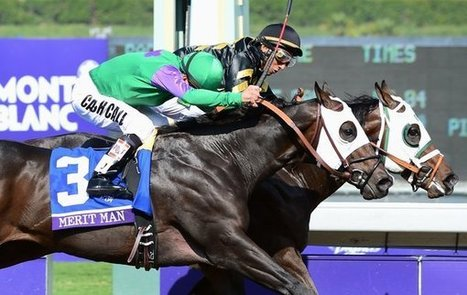 Hightail gives Wayne Lukas, 77, a win in Juvenile Sprint   Horse Racing News   Scoop.it