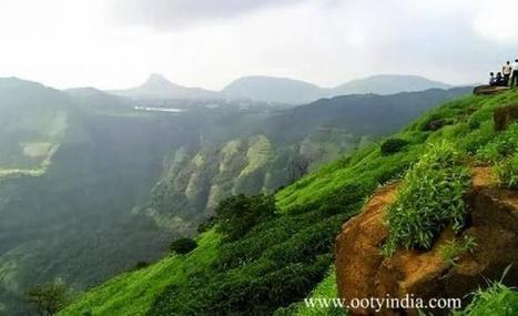 Explore diverse wildlife during vacation in the queen of hills | Tour to Ooty India | Scoop.it