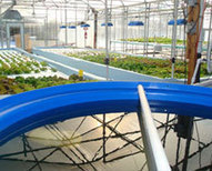 Nelson and Pade, Inc., Aquaponic Systems, Training and Consulting | Nelson & Pade, Inc. | Aquaponics World View | Scoop.it