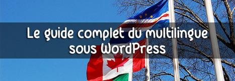Découvrez les plugins Multilingues pour WordPress | Worpress & co | Scoop.it