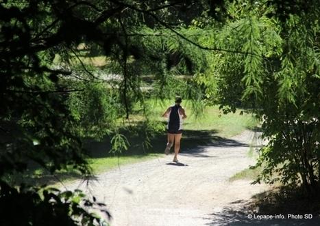 Courir pour dompter son stress ou en générer ? | Lepape-Info.com | Stress | Scoop.it