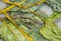 Veggies To Blame For Majority Of Foodborne Illnesses   TIME.com   Local Food Systems   Scoop.it
