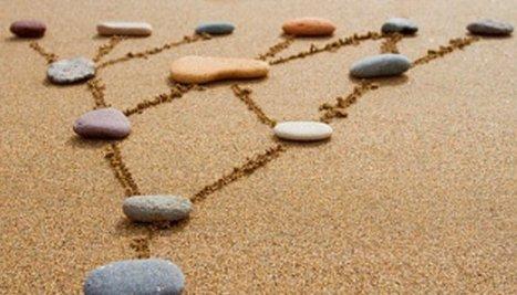 Comment LinkedIn a-t-il écrasé ses concurrents ? | Mon Community Management | Scoop.it