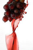 Resveratrol may improve mobility in older subjects: Animal data | Longevity science | Scoop.it
