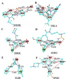 Discovery of Novel Hepatitis C Virus NS5B Polymerase Inhibitors by Combining Random Forest, Multiple e-Pharmacophore Modeling and Docking | Hepatitis C New Drugs Review | Scoop.it