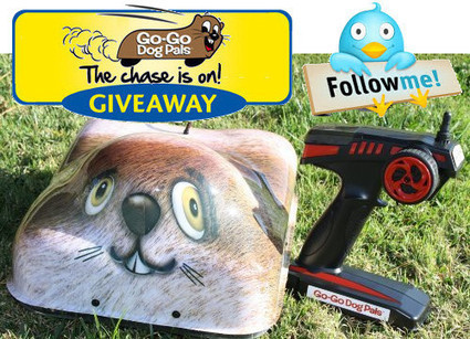 Go Go Dog Pal Giveaway, The Final Quest | Interactive Dog Toys | Scoop.it