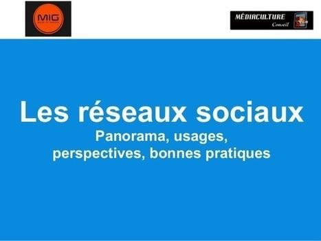 Les réseaux sociaux en 2013 | TeraPedia - Club Informatique | Les nouvelles du web | Scoop.it