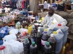 Adamaoua : Des milliers de familles vivent grâce au miel | Abeilles, intoxications et informations | Scoop.it