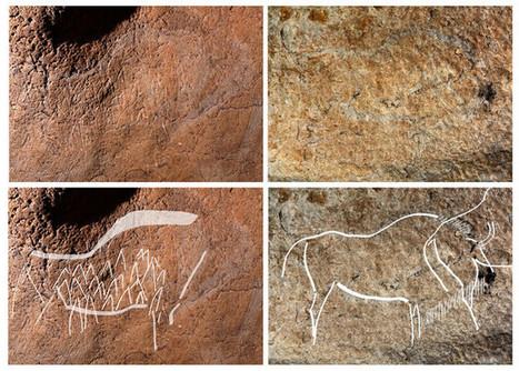 Des peintures rupestres découvertes au Pays basque | Cote-basque way of life | Scoop.it