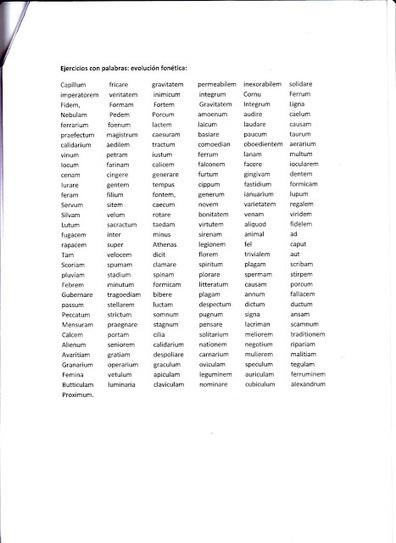 El mundo de la filología clásica: ¿CÓMO EVOLUCIONÓ EL LATÍN HASTA LA LENGUA QUE HABLAMOS HOY EN DÍA? | Mundo Clásico | Scoop.it